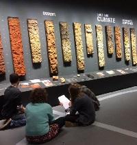 World Soil Museum Wageningen