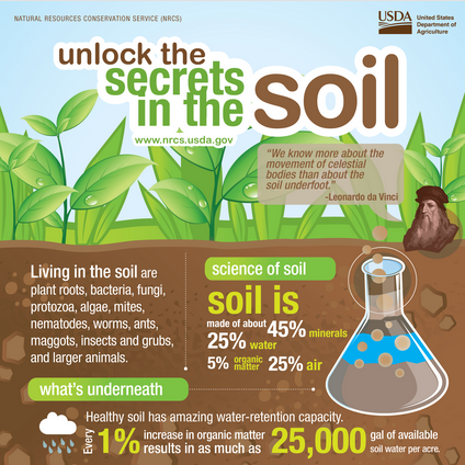 Unlock the secrets of the soil